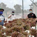 """SYARIKAT MILIK ANAK SARAWAK PERTAMA MENDAPAT PENGIKTIRAFAN SYARIKAT """"HYDROPONIC IOT FARMING"""" WITH PROOF OF CONCEPT DI MALAYSIA"""